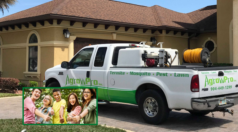 green cove springs pest control services 1 - Home