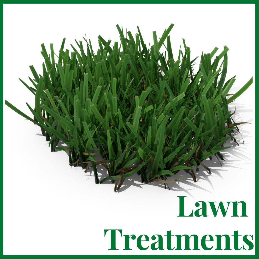 green cove springs lawn treatments - Home